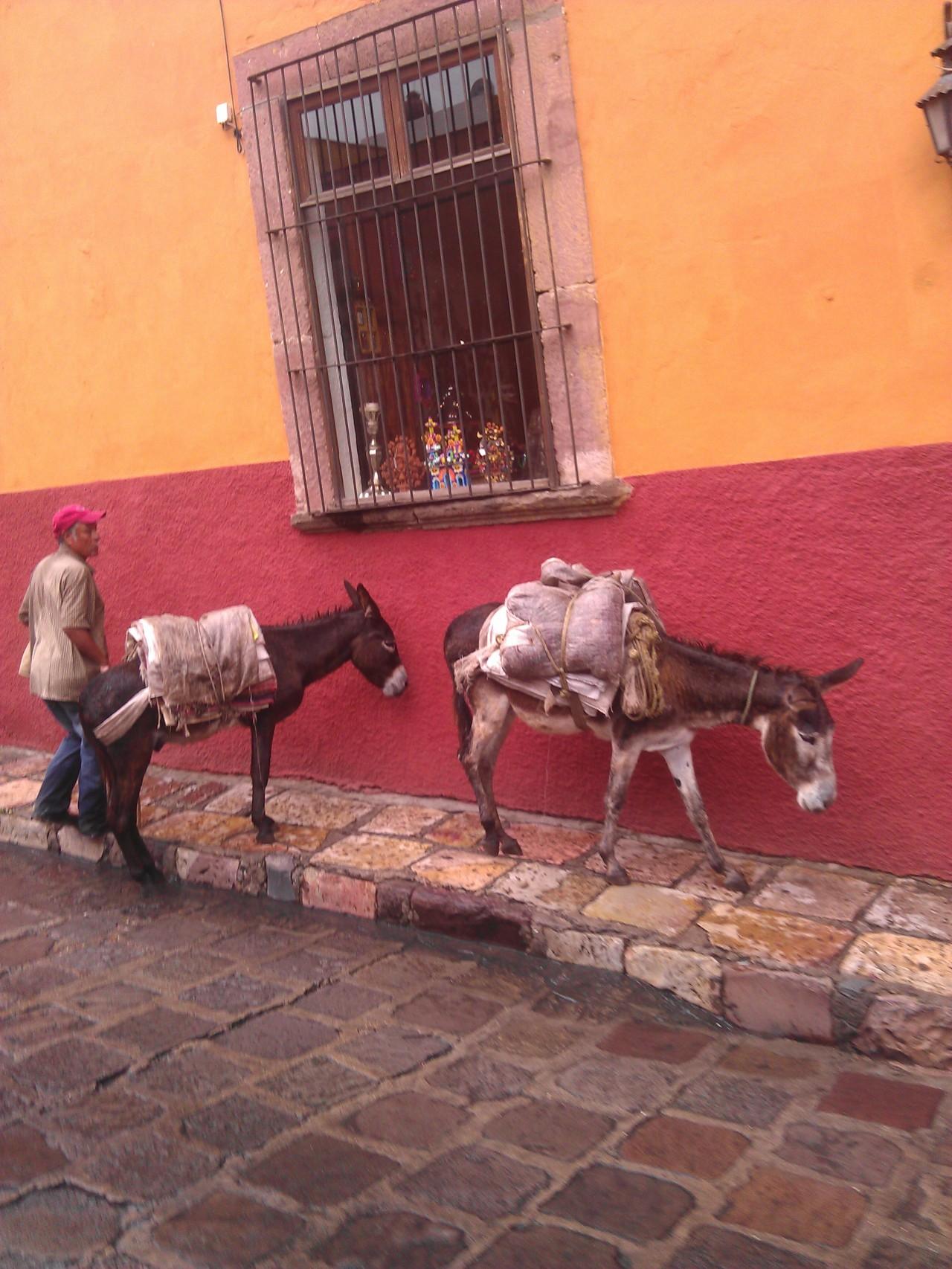 México y sus Místicos PueblosMágicos